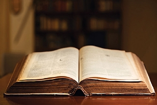 """תנ""""ך בין תחומי"""